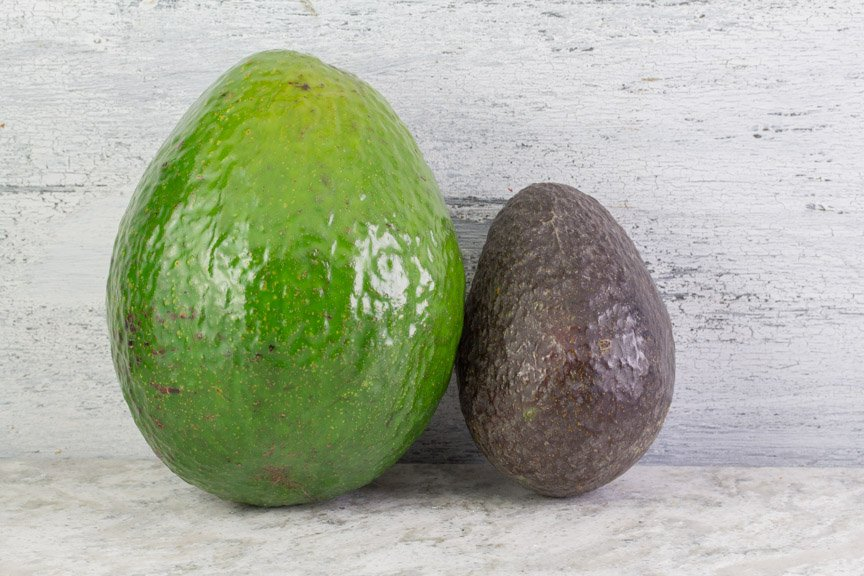 Comparison of avocado types. Florida on the left, Haas on the right.