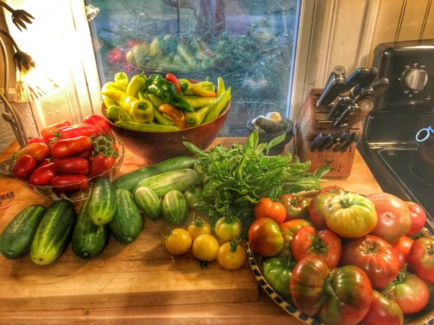 A harvest of fresh tomatoes, cucumbers and peppers from the FODMAP Everyday garden.