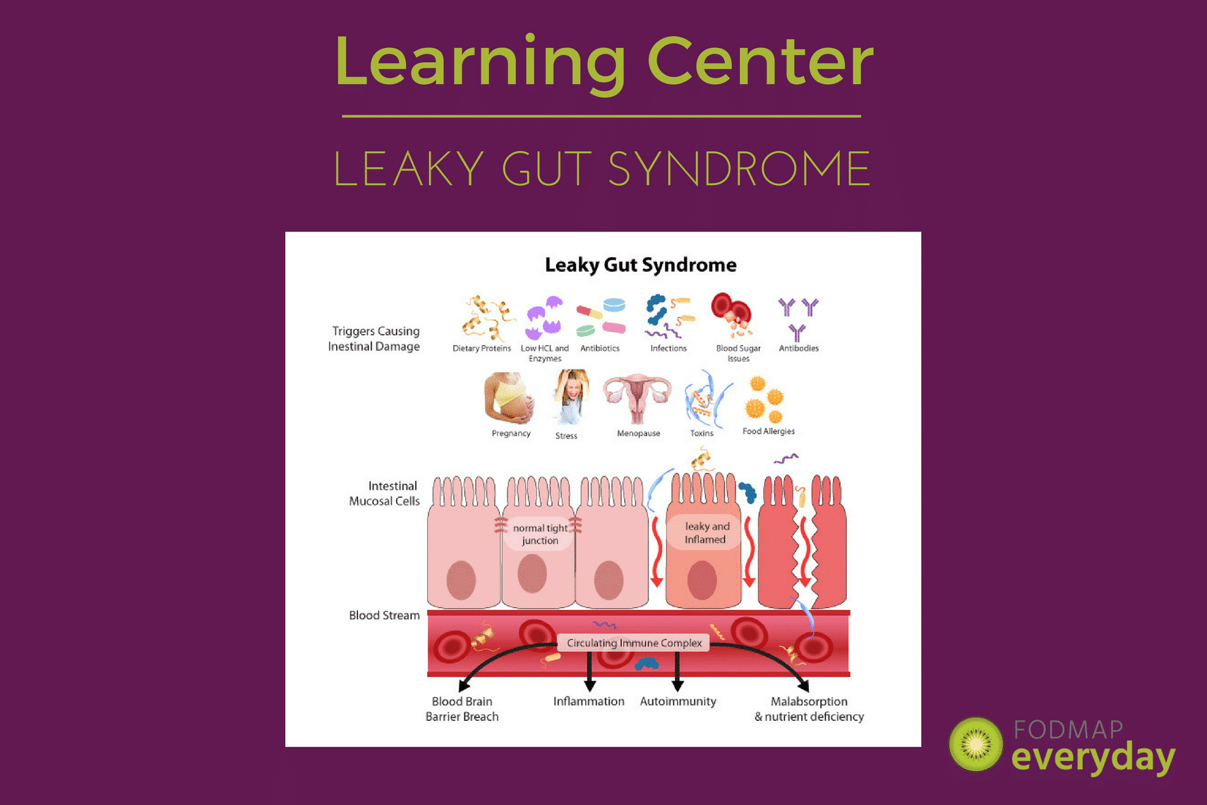 Learn about Leaky Gut Syndrome