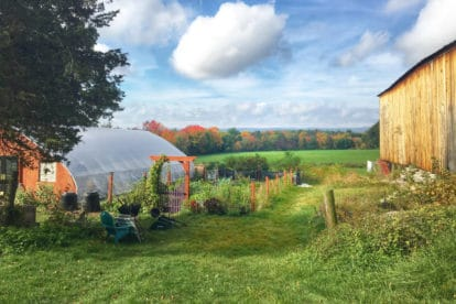 The FODMAP Everyday Farm in the Fall