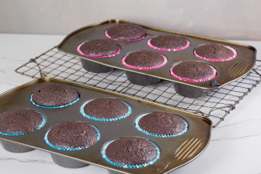 low FODMAP chocolate cupcakes in pan