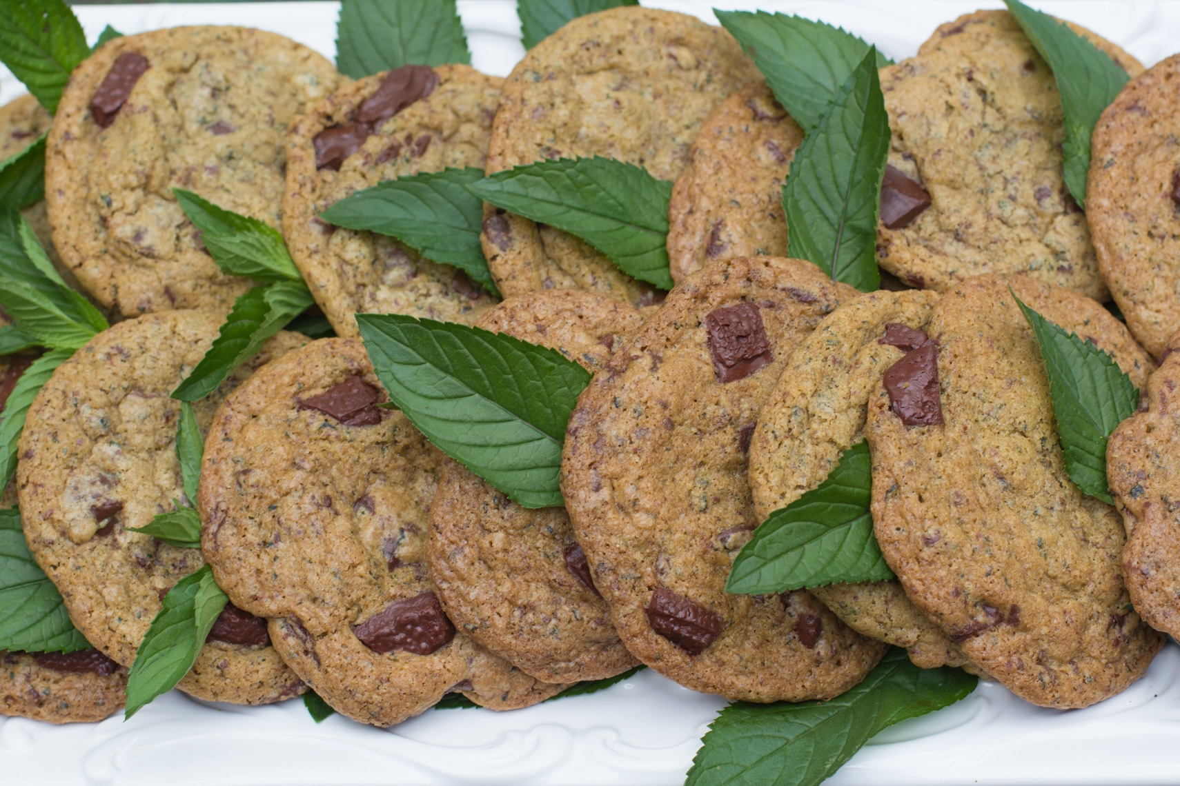 fresh mint chocolate chunk cookies