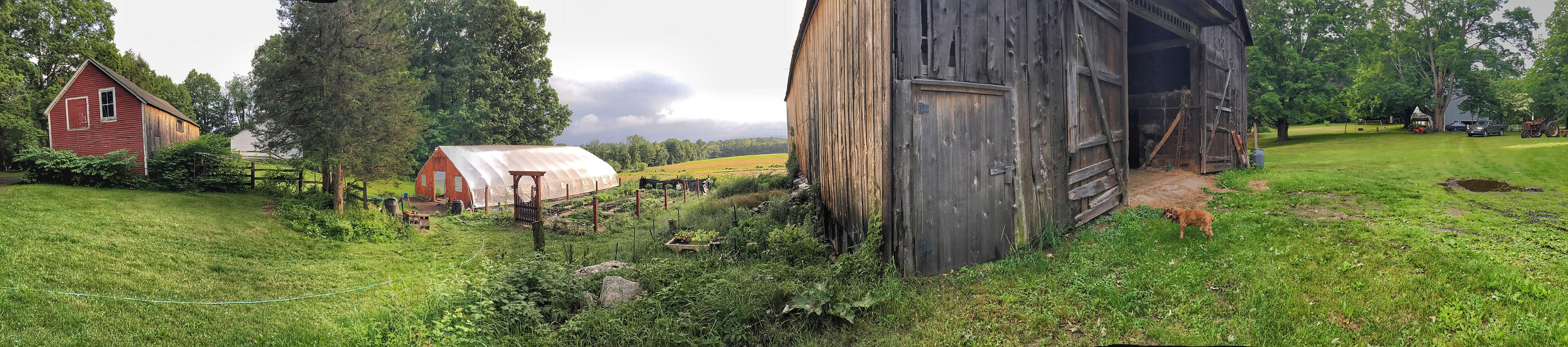 Panoramic view of the farm.