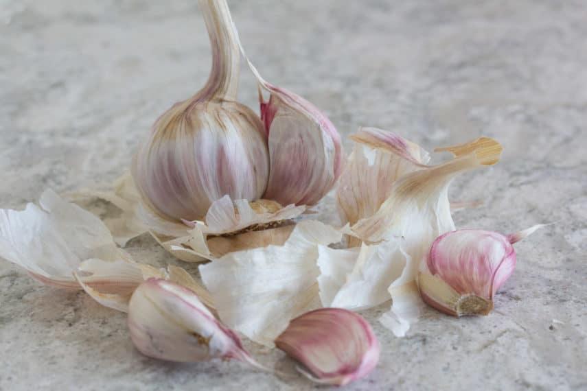 garlic papery skin
