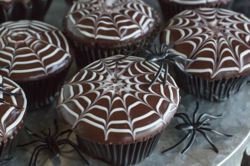 A close up view of spiderweb decorated chocolate cupcakes surrounded by black spooky spiders- a Low FODMAP Halloween treat!
