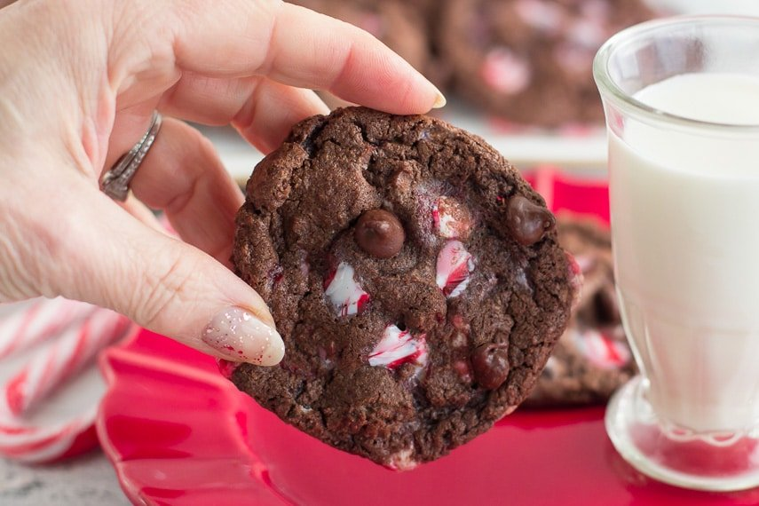 double chocolate peppermint cookie horizontal image with hand