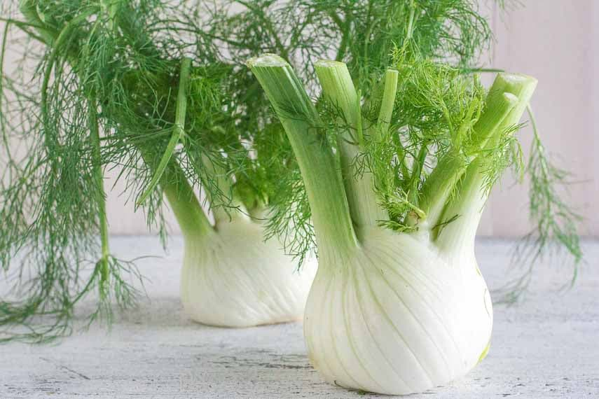 fennel bulbs on a white wooden surface