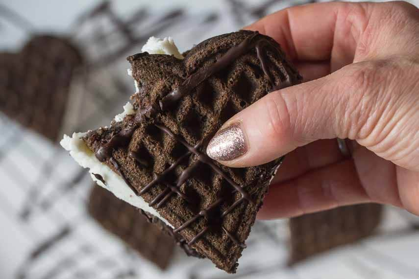 bite out of gluten free, lactose free, low fodmap dark chocolate ice cream sandwich