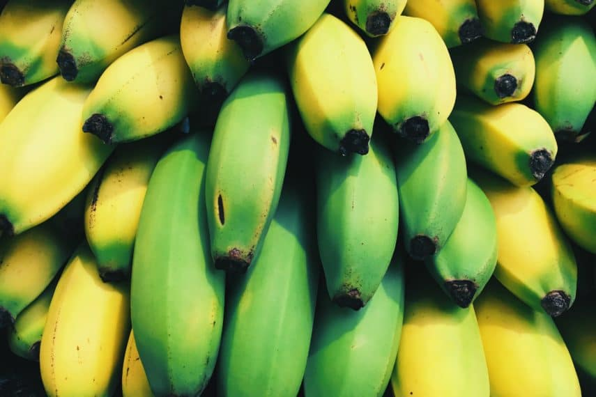 Bananas and the Low FODMAP Diet - Food Processing Series