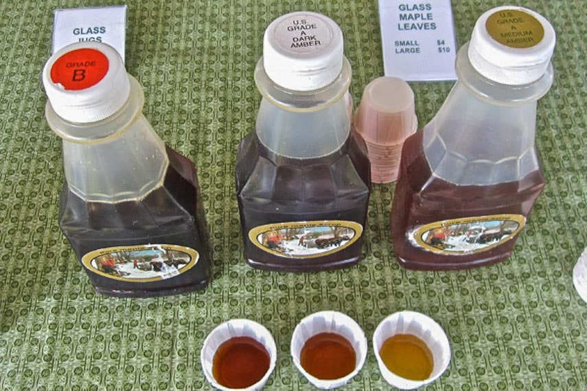 maple-syrup-comparisons