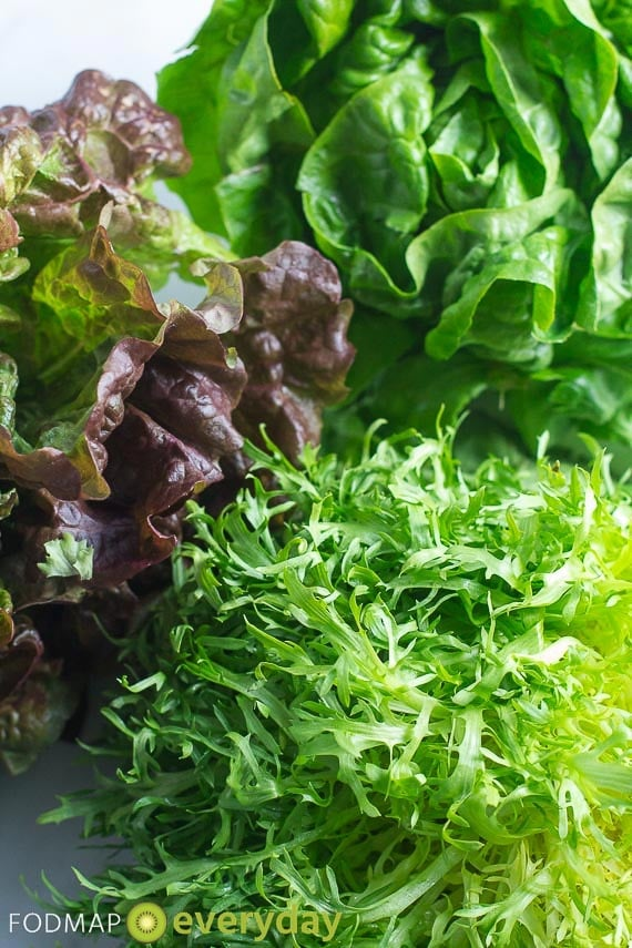 Frisée, red leaf lettuce and butter lettuce - all contain NO FODMAPs!