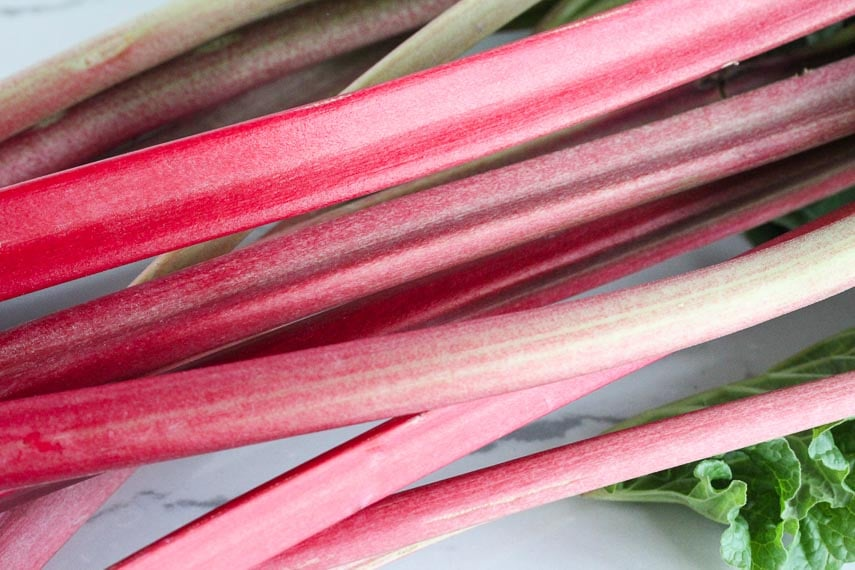 fresh rhubarb stalks on a white quartz surface