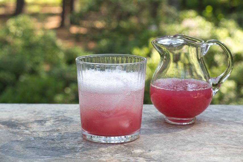 rhubarb ginger syrup in glass topped with sparkling water