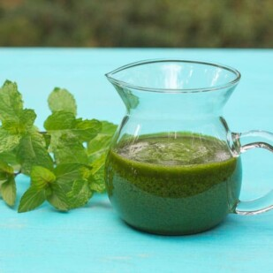 Low FODMP Mint salsa verde in glass pitcher with fresh mint alongside