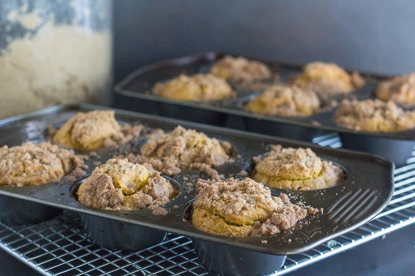 low FODMAP dairy free gluten free pumpkin streusel muffins in pans on cooling racks