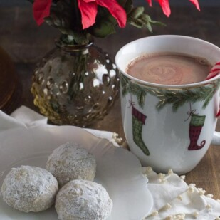 low fodmap mint hot chocolate in a festive mug