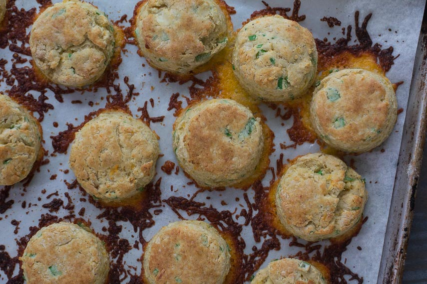 overhead of low fodmap cheddar scallion biscuits on baking pan
