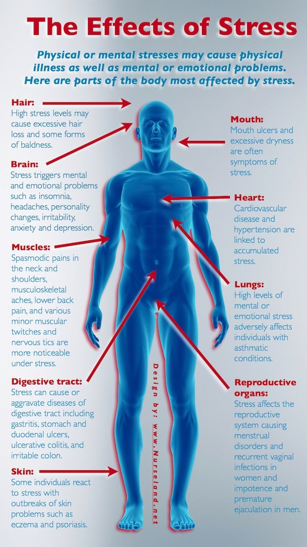 Stress Effects on the Body- a map of all of the ways stress can impact your body