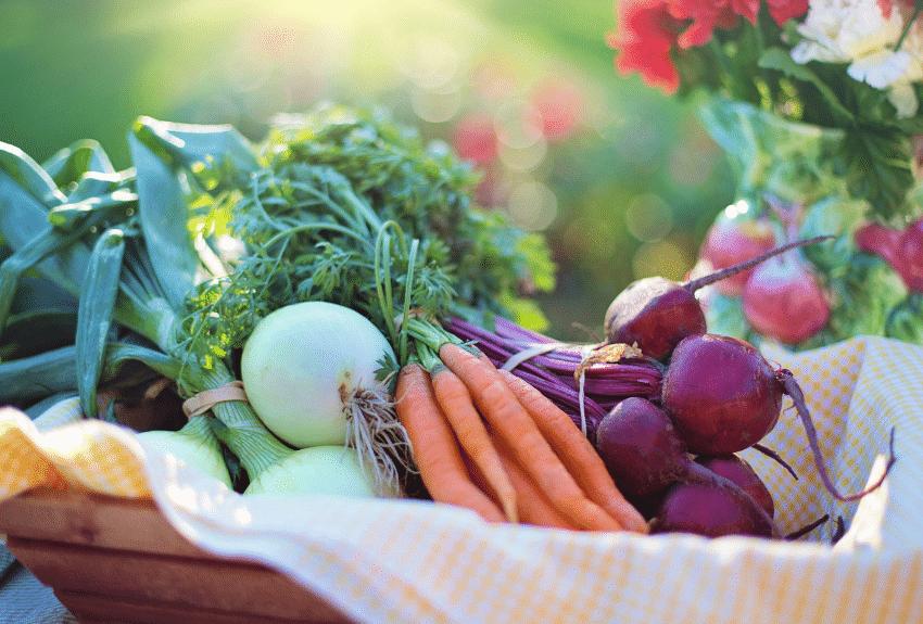 a basket of fresh vegetables