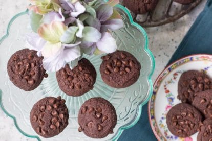 low fodmap double chocolate shortbread cookies on glass plate