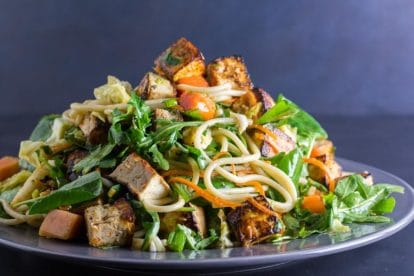 main image of Low FODMAP Asian Tofu Noodle Papaya Salad on a gray plate against dark background