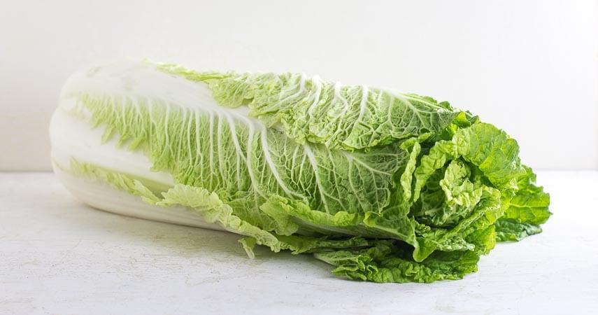 Napa cabbage on white background