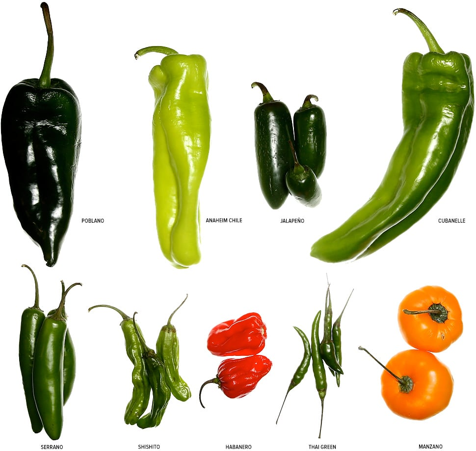 various peppers on white background