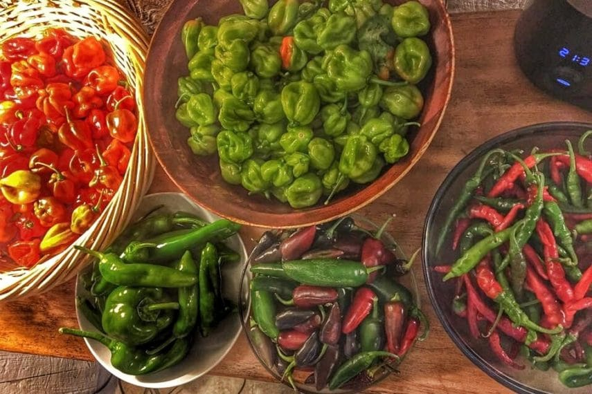 Overhead shot of different fresh hot peppers in bowls.