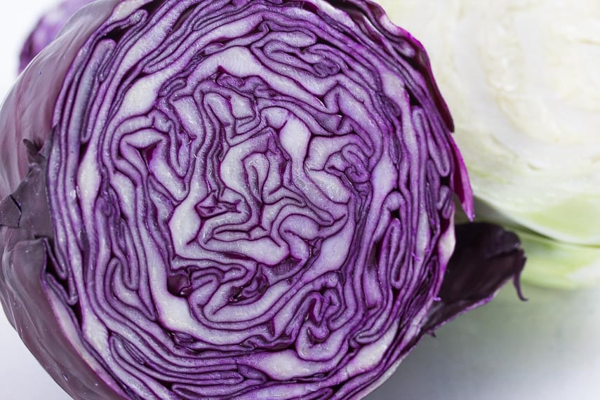 red cabbage closeup on white background
