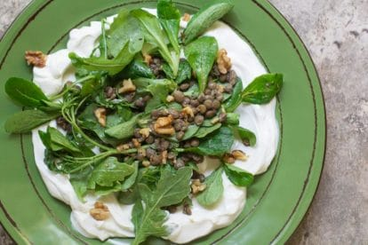 Low FODMAP Lentil Salad with Greens on a green plate; tile surface