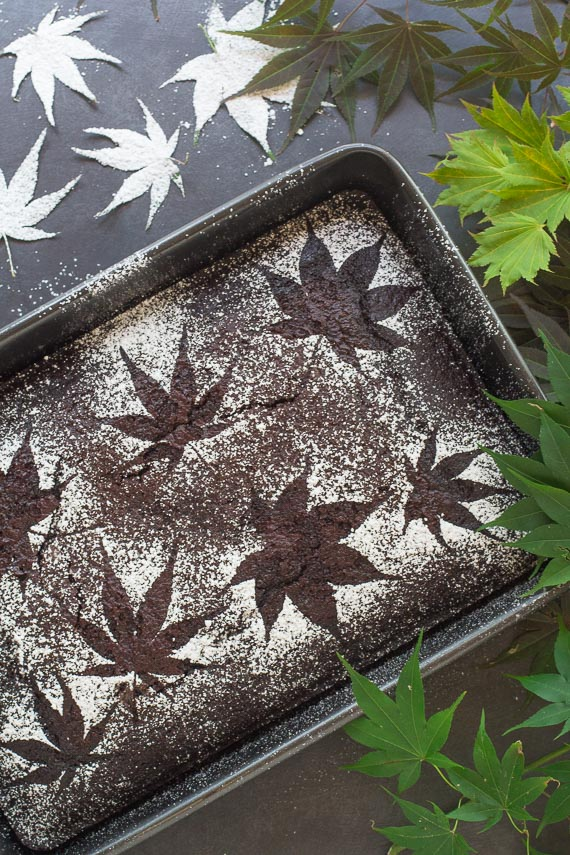Spicy Low FODMAP Chocolate Snack Cake in pan with Japanese Maples creating a stencil; vertical image