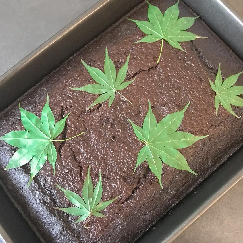 fresh leaves on top of spicy low FODMAP chocolate snack cake to be used as a stencil