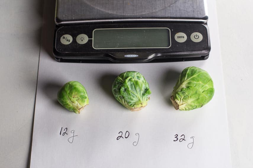 sizes of Brussels sprouts