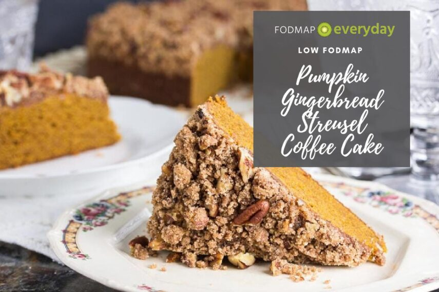 A close up of a slice of pumpkin gingerbread streusel coffee cake