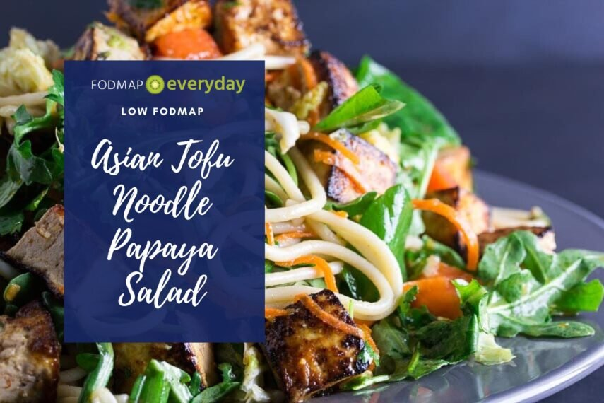 closeup of Low FODMAP Asian Tofu Noodle Papaya Salad on gray plate