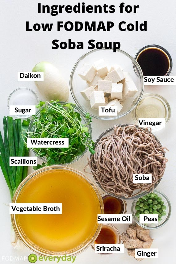 Cold Soba Soup Ingredients