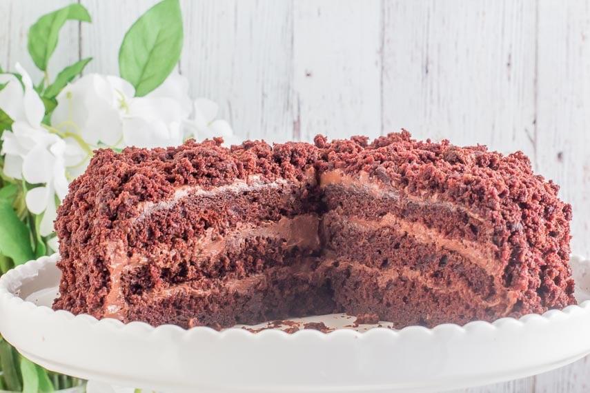 Low FODMAP Blackout Cake on display cake cut open