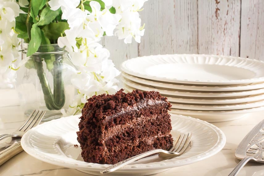 horizontal image of Low FODMAP Blackout Cake on white plate