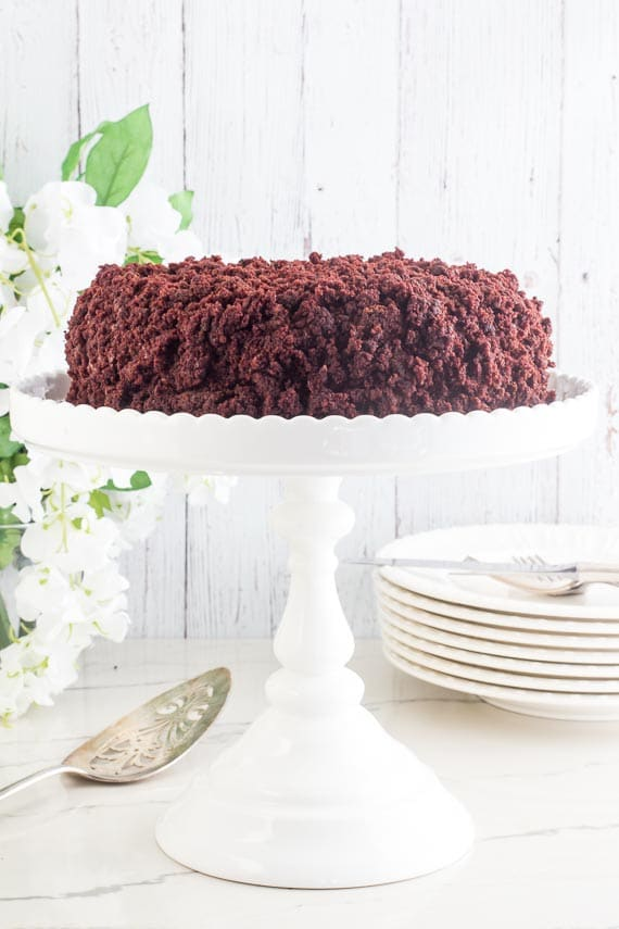 whole low FODMAP Blackout Cake on white pedestal