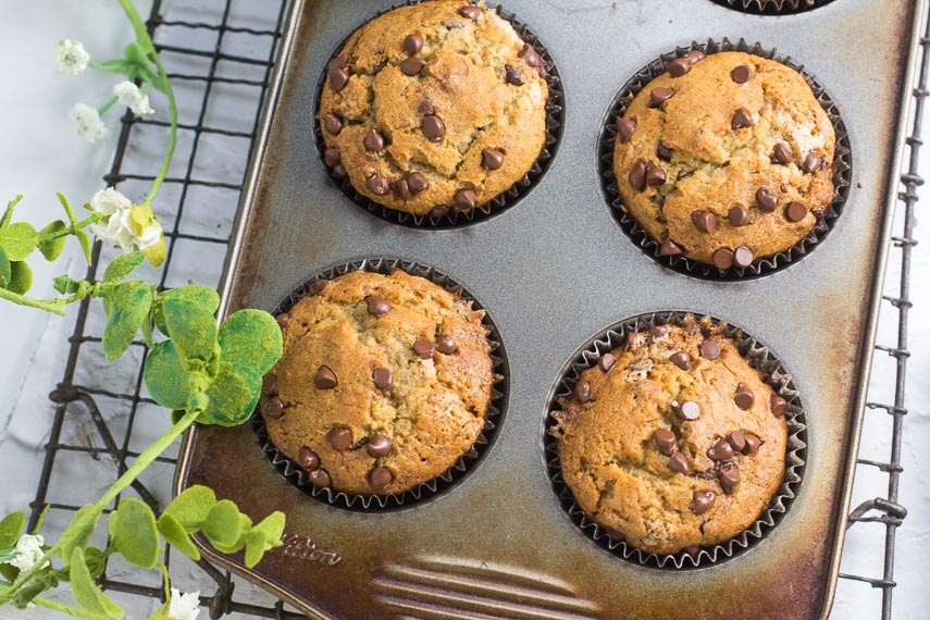 Low FODMAP Banana Chocolate Chip Muffins in pan on rack