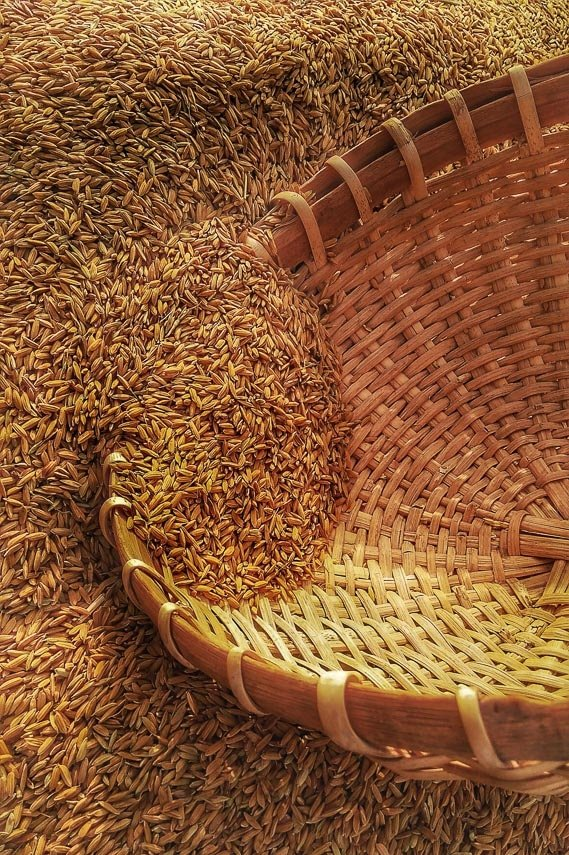 grain spilling into a basket