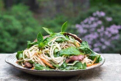 horizontal image of Low FODMAP Thai Basil Steak Salad on rustic round white plate
