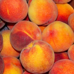 a pile of ripe peaches