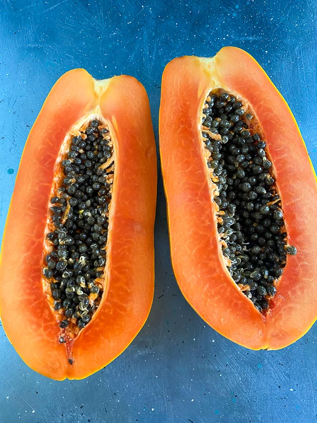 ripe papaya cut open to reveal orange flesh and black seeds on blue background; vertical image