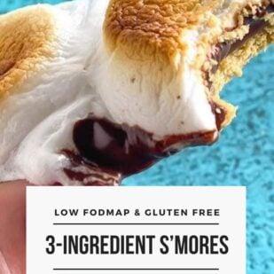 Almost Instant, 3-Ingredient Low FODMAP S'Mores