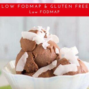 Low FODMAP Chocolate Coconut Sorbet