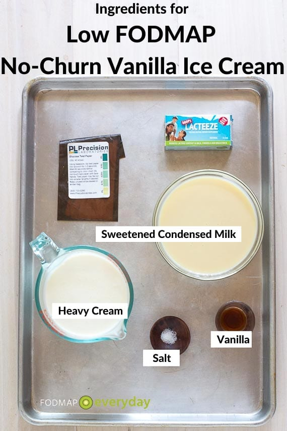No churn Vanilla Ice Cream ingredients