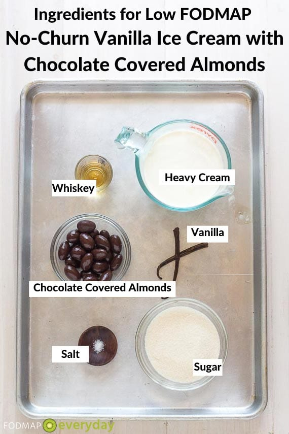 No churn Vanilla Ice Cream with chocolate covered almonds ingredients