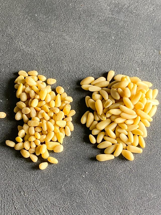 Two piles of pine nuts, comparing varieties, on grey background