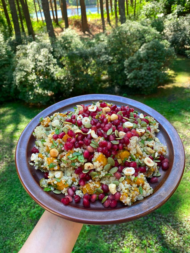squash, quinoa, pomegranate salad on a brown plate, shown outdoors